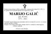 marijo-galic