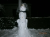 svinca-snješko